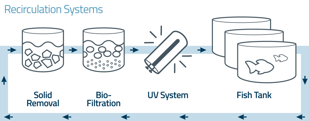 uv-guard aquaculture recirculation systems
